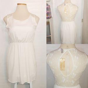 Francesca's | 🆕️ Off White Dress Mesh Lace Back